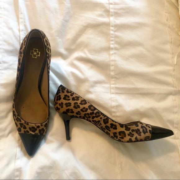 53c0292bbfa Ann Taylor Shoes - Ann Taylor leopard print calf hair kitten heels